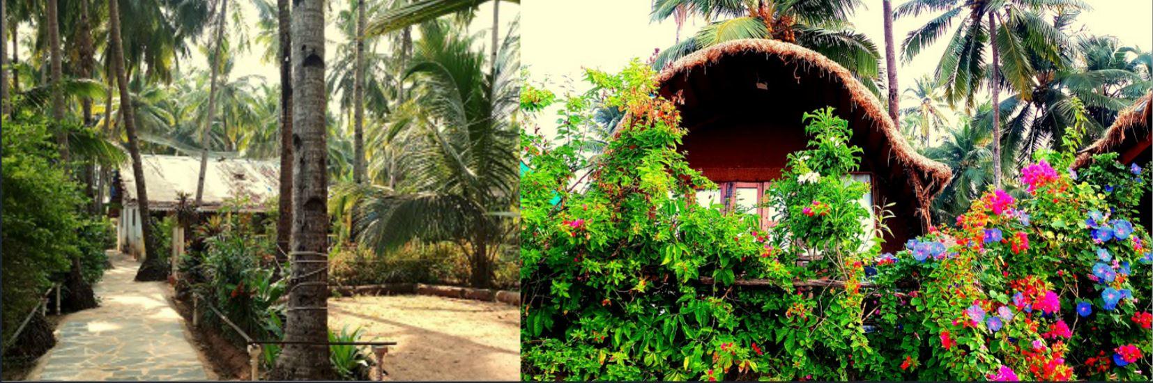 Accomodation YTTC in Goa