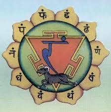 Anahata study in India - Aranya Yoga